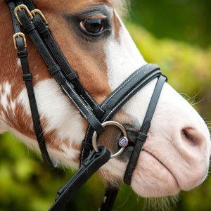 Pony bits